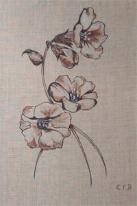 Chambre fleur de coton