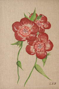 Chambre fleur de lin